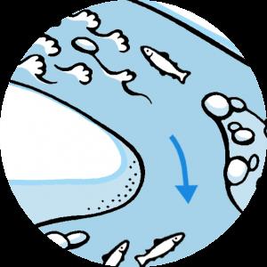 river-part-left-bend
